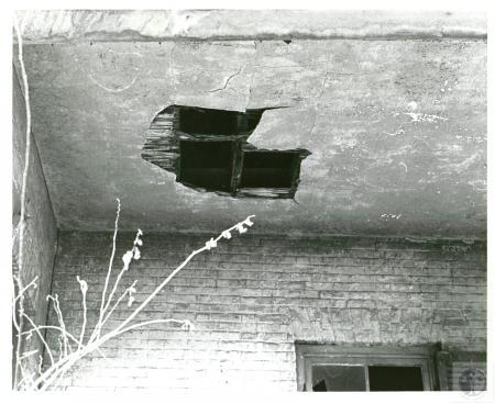 Image: di02134 - plant site