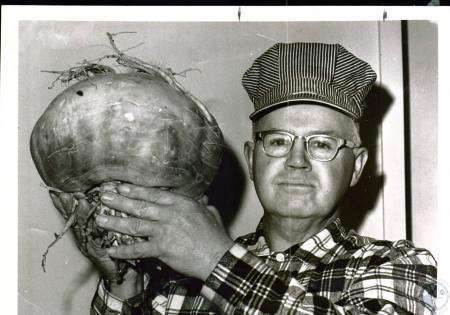 Image: di03722 - Sam Black, 58, grew 12 1/2 pound turnip