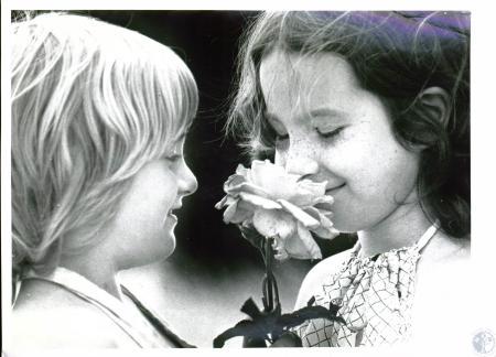 Image: di03817 - Danny True (6) and Sheila True (9) - cousins smelling roses