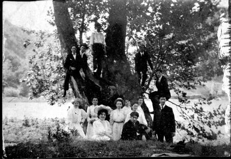 Image: di101931a - Group of fourteen unidentified adults in and around a large tree on the bank of a river or pond