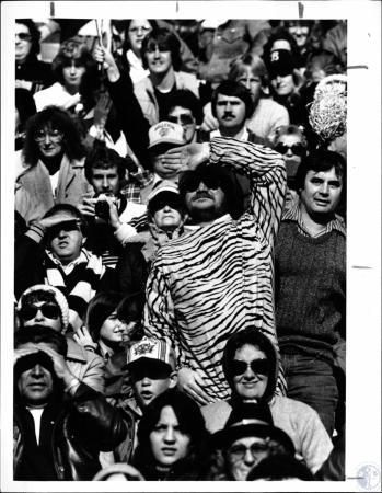 Image: di127982 - Bellevue Tiger fans