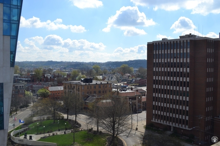 Image: di128378 - Aerial view of Covington's deserted streets near the Roebling Bridge, showing the courthouse and a small....