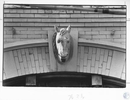 Image: di13308 - horsehead ornament on Ostrow Furniture Building