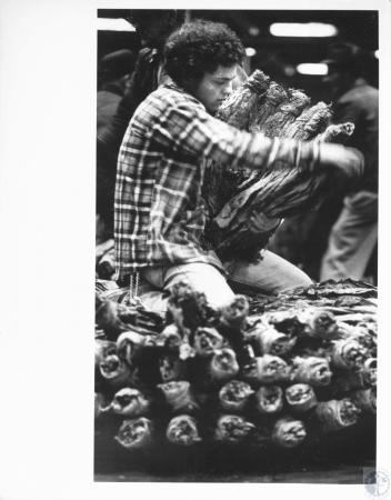 Image: di14232 - Jerry Doll (19) packing tobacco on skid at Carrollton Tobacco warehouse