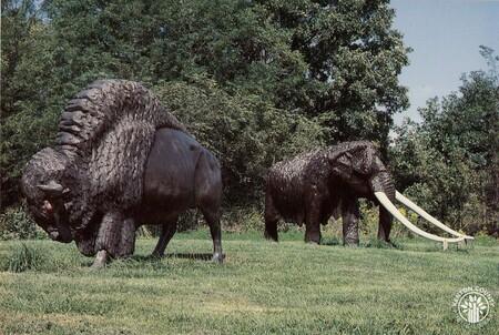 Image: di140433 - Bison and Mastodon at Big Bone Lake State Park.