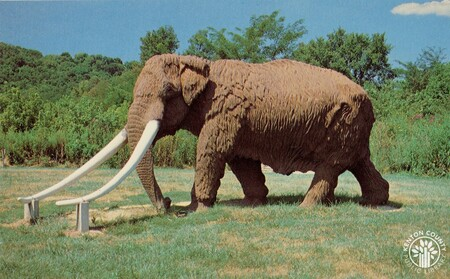 Image: di140435 - Mastodon at Big Bone Lake State Park.