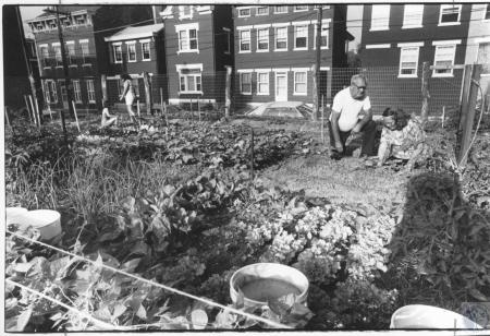 Image: di15168 - Delbert and Lula Hansy working in Covington Community Garden