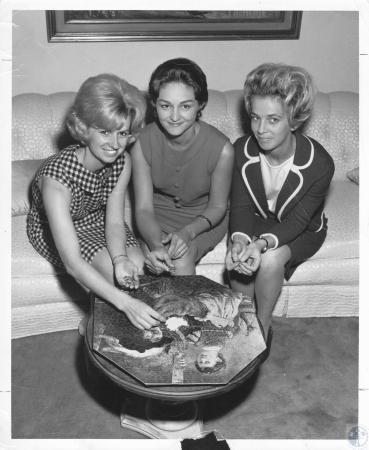 Image: di20804 - Mrs. Paul Stratman, Mrs. Robert Langford, Mrs. James Schilling