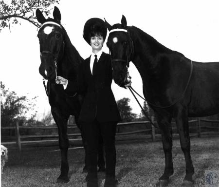 Image: di25097 - Judy Parker horse trainer