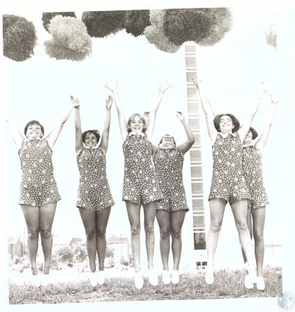 Image: di33721 - From Left: Linda Swanson, Bonnie Jones, Karen Kranz, Jean Lucas, Jo Ann Arnold, Claudia Roberts, Lloyd....