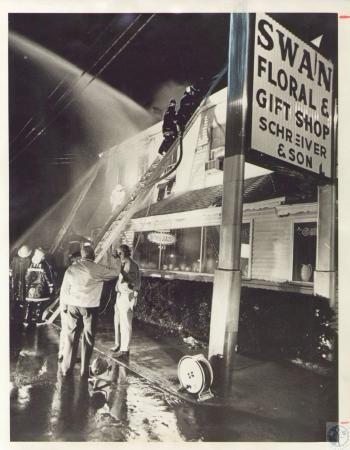 Image: di34038 - Swan Floral $200,000 fire