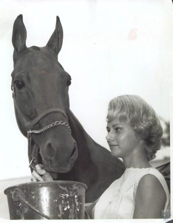 Image: di34460 - Pat Strassel and horse