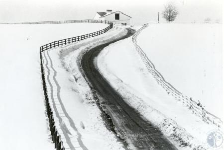 Image: di40258 - The Blizzard of '78 - snowy rural road