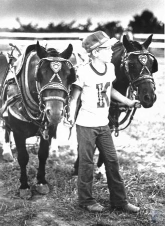 Image: di52172 - Mike Emmons (11) with pony team at Kenton County Fair