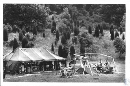 Image: di58530 - At left is Kitchen and mess tent. At right is a work area at archeological dig