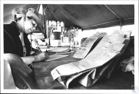 Image: di58531 - Debbie Dolan (20), Frankfort, cataloging surface collection bags which contain artifacts (arrowheads,....