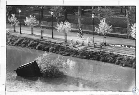 Image: di63075 - Riverside Driver from bridge of Mike Fink. River level 51.9'