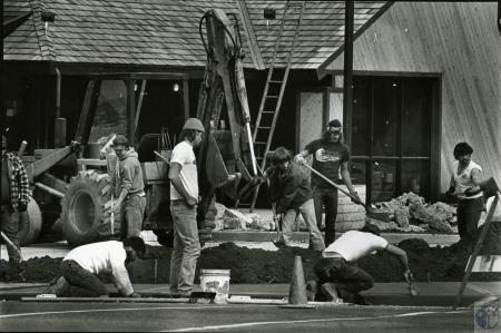 Image: di73468 - Unidentified cement workers and landscapers in action.