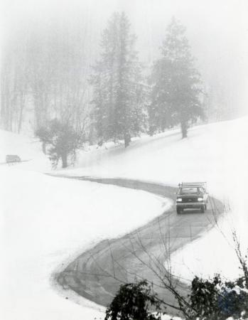 Image: di83126 - Unidentified motorist navigating Devou Park Road through golf course.