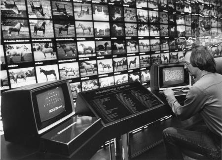 Image: di91328 - Bill Cooke (34), museum director at the Kentucky Horse Park. At the Breed Wall computer. Tourists can....