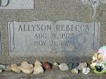 di115513 - Allyson Rebecca Mailfald