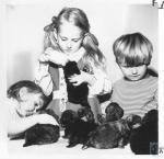 di20423 - Jennifer Steidel, Melanie Jean Steidel and ...
