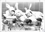 di53871 - Easter babies at St. Elizabeth (L-R) Jason ...