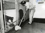 di82726 - Mike Kahrs, Campbell County Kennel Attendent ...