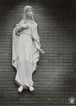 di96047 - A life size relief of the Blessed Virgin ...