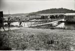di96095 - Settlers Trace Marina at Taylorsville Lake