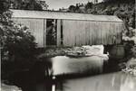 di97106 - Damaged Covered Bridge