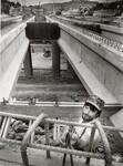 di97187 - Mike Adams, Lexington, KY., works for Incisa, ...