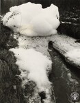 di98738 - The Camco Chemical Co. spill at Mock Rd. ...