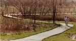 di98765 - Three persons jog along a path through Big ...